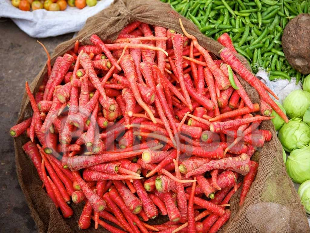 Red Colour Carrots